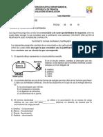 Evalución de Nivelación sexto y septimo