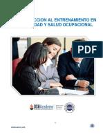 Manual Entrenamiento SSMA.docx