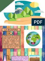 Contaminacion de La Biosfera
