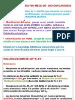 BioremMetal2