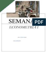 Avance Del Trabajo de Econometria I