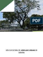 Saravena Arauca