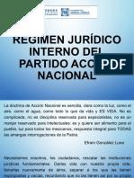 Régimen Jurídico Interno del PAN, José Martínez Valero