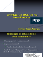 aula-2-ascarideos.pdf