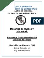 MDF_MERINO_L_CONCEP_FUN_MEC_DE_FLU.docx