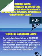 Exposicion - Regimen Disciplinario Civil y Estabilidad Laboral