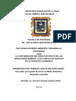 TESIS_DOCTORADO_MEDIO.AMBIE.DESARR.SOST_ROBERTO CARLOS MALAVER DANÓS.pdf