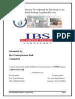 Interim Report Dev