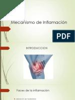 Mecanismo de Inflamación