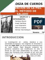 332266331-Conservacion-de-La-Piel-Por-El-Metodo-SALADO[1].pptx