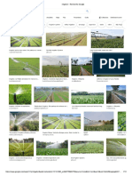 irrigation - Illustration