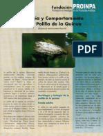 Biologia y Comportamiento de la Polilla de la Quinua-PROINPA_R.M.