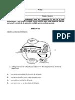 bancodepreguntascienciasnaturales-170611170748