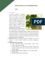 Plantas Medicinales Para Las Vias Respiiratorias