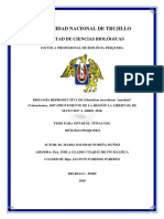 Nureña Muñoz.pdf