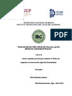 Bañales_Santos_Erick_Tesis_2019.pdf