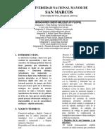 Informe Pds