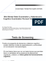 1C. Mini Mental State Examination y Addenbrook's Cognitive Examination Revised VCh