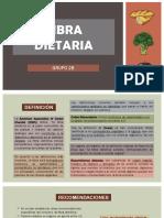 Fibra Dietaria 2 (1)