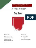 Mini Project Red Door Report