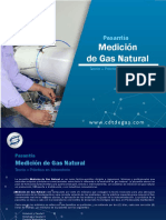 161PasantiaGas.pdf