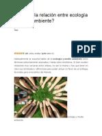 Cuál es la relación entre ecología y medio ambiente.docx