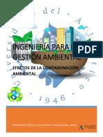 INGENIERÍA PARA LA GESTIÓN AMBIENTAL (Autoguardado).pdf