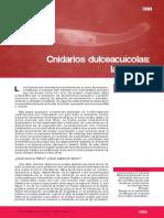 Cnidarios dulceacuicola