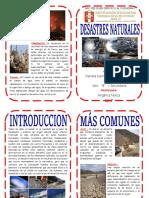 DIPTICO DESASTRES NATURALES