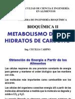 CATABOLISMO-CARBOHIDRATOS-2013.pdf