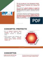 PIM, Programación de Proyectos