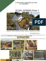 Manejo Del Apiario1