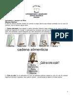 APRENDEMOS-CCNN-VASOS