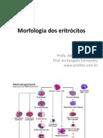 Principais Alteracoes Morfologicas Eritrocitos
