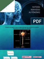 Sistema Nervioso Expo