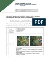 Ejercicio1 y 2_POA_Gelmo Alexander Cuellar