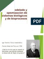Modelado y optimización de bioprocesos