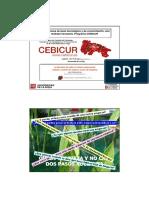 presentacion_impresa.pdf