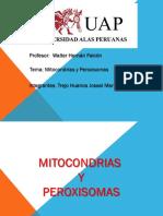 mitocondriasyperoxisomastrejohuancajossel-130819215714-phpapp02
