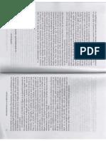 FEIXAS_Cap_tulo_II.pdf