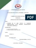 Informe Gira de observacion.pdf
