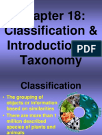capitulo 18 taxonomia