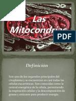 Presentacion Mitocondrias