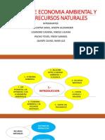 MANUAL DE ECONOMIA AMBIENTAL Y DE LOS RECURSOS CAPTIULO 1 Y 2.pptx