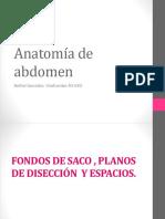 Anatomia Qx Gyo