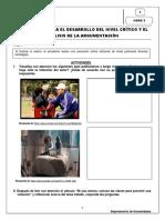 S7_Estrategias Para El Nivel Critico y Arg (1)