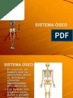 Sistema Oseo Diapositivas