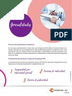 PREST ECONO - USUARIO.PDF