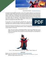 FHSS Rojo y Morado
