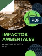 Impactos Ambientales Final